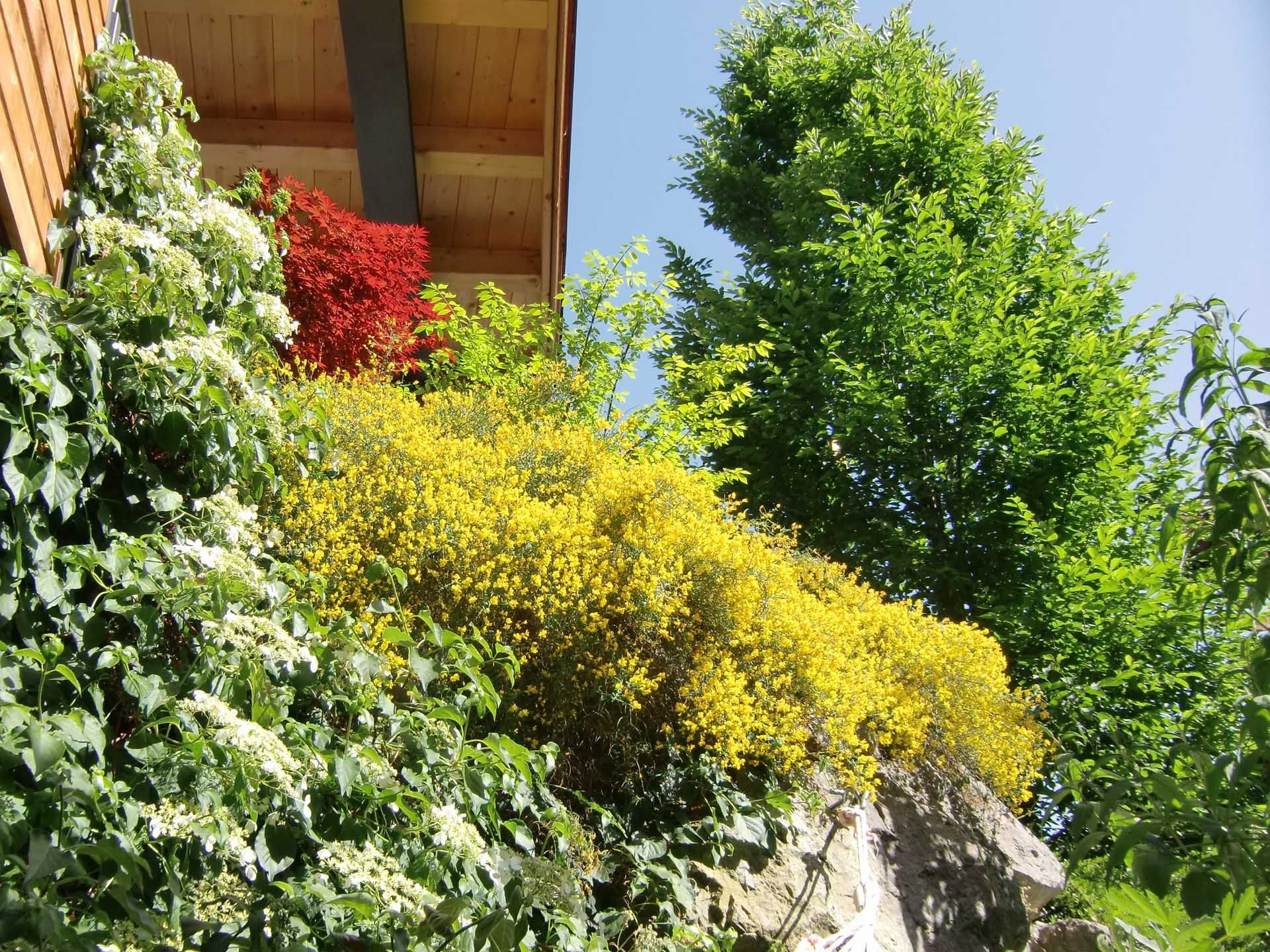 Gartenbau Hannes Laiminger Hopfgarten im Brixental